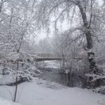 La neige fait son retour !!